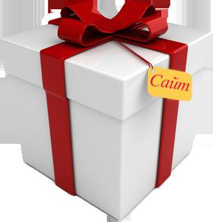 Gift подарки на сайт